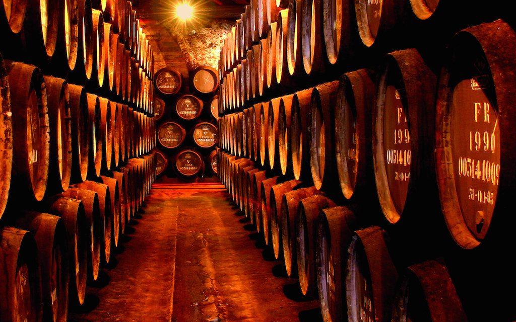 degustazione vini porto